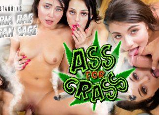 Ass for Grass