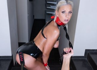 Obedient Slave