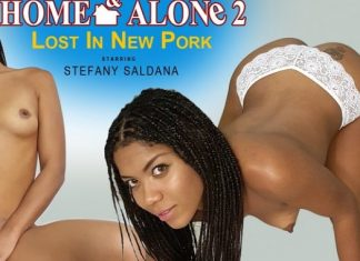 Home & Alone 2 – Lost in New Pork