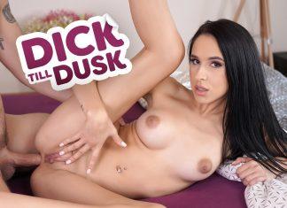 Dick till Dusk