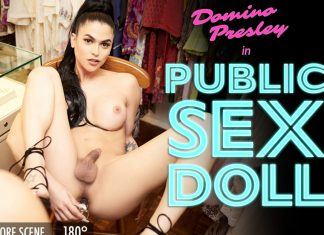 Public Sexdoll!