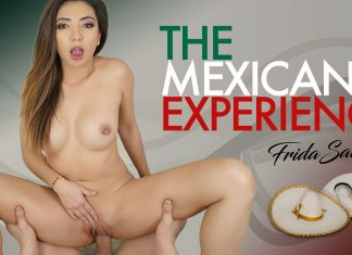 The Mexican Experience