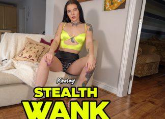 Stealth Wank