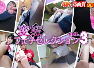 Perverted Fetish Selection – The Stockings vol. 3